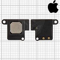 Динамик (слуховой, speaker) для Apple iPhone 5 (оригинал)