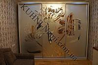 Шкаф-купе с комбинацией зеркала и пескоструйного рисунка на двери на заказ