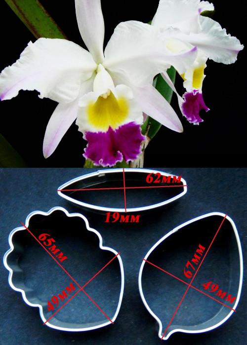 Каттер орхидея каттлея, из 3 деталей