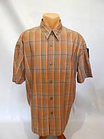 166РК Мужская рубашка с коротким рукавом SIGNUM , фото 1