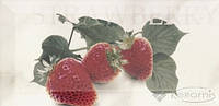 Mainzu декор Mainzu Doric 10x20 strawberry
