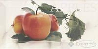Mainzu декор Mainzu Doric 10x20 apple