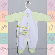 Одежда для недоношенных 44 и 50рост, в роддом от 30-35 недель,хлопок 1425тро, В наличии 44,50 Рост, фото 3