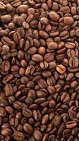 Кофе в зернах Gold Extra blend  50% арабика /50% робуста (весовой)