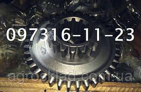 Шестерня 50-1701218 (МТЗ, Д-240) 5 передачи и заднего хода