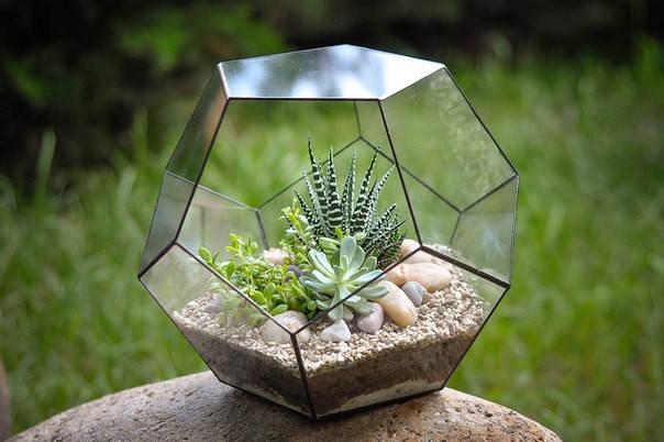 Флорариум  для цветов( Додекаэдр )200х200                       , фото 2