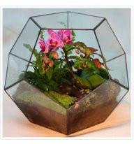 Флорариум  для цветов( Додекаэдр )200х200                       , фото 3