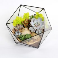 Флорариум (террариум) для цветов (Икосаэдр Half ) 180х160