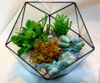 Флорариум (террариум) для цветов (Икосаэдр Half ) 180х160                                    , фото 2