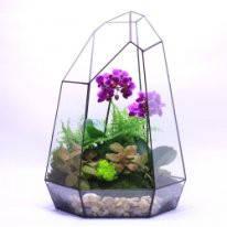 Флорариум (террариум) для цветов (Кристалл) 180х260                                    , фото 2