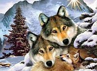 Алмазная мозаика Стая волков 30 х 40 см (арт. FS182)