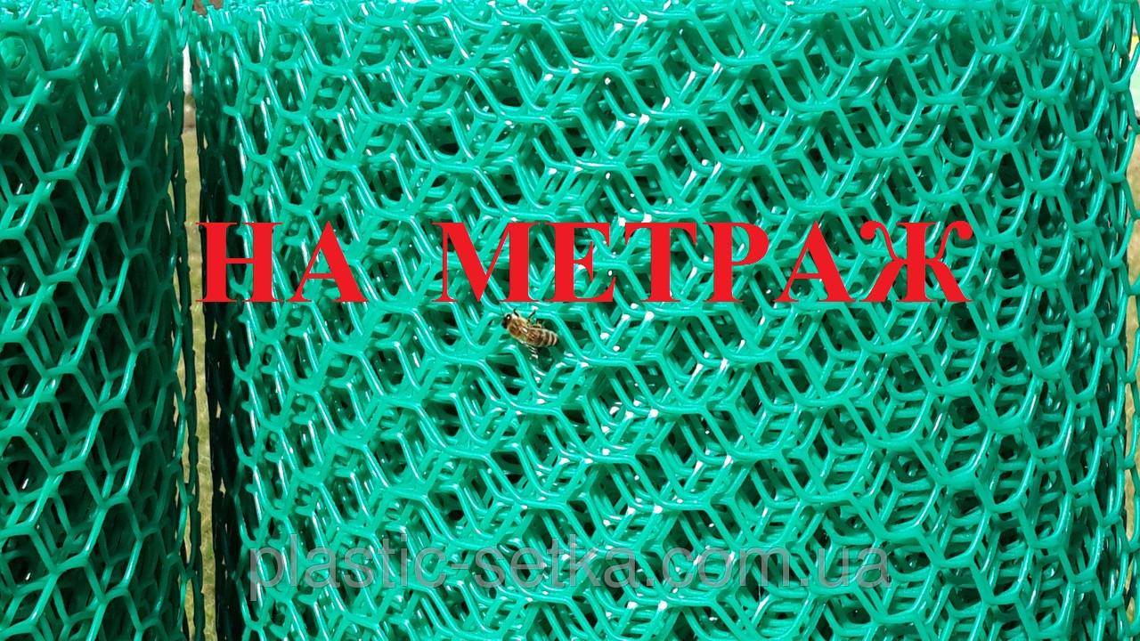 Пластиковая сетка ячейка 1,9*1,9см сота 1м НА МЕТРАЖ