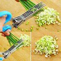 Кухонные ножницы для зелени, фото 1