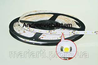 Яркая светодиодная лента, белая, в силиконе! 3528 smd, 300 Led - белая! 5 метров! LED лента!, фото 2