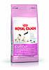 Корм для котят и кошек Royal Canin Mother & Babycat Роял Канин  Беби кэт