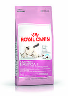 Корм для котят и кошек Royal Canin Mother & Babycat Роял Канин  Беби кэт