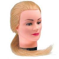 Учебные головы для парикмахеров