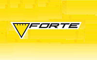 Зарядные и пуско-зарядные устройства FORTE