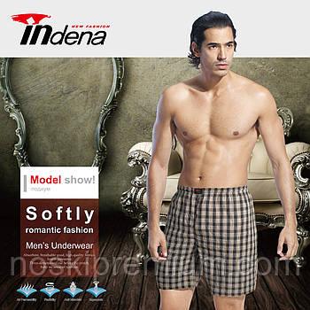 Мужские шорты х/б поплин клетка Indena 5503, с карманами по бокам