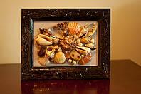 Декор интерьера - картина морские ракушки