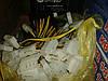 Кабель питания видеокарты 2 Molex - 6-pin , фото 2
