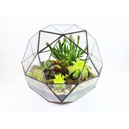 Флораріум для квітів (Куля) 300х300, фото 2