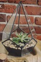 Флорариум для цветов Додекаэдр каплевидный 200х290, фото 3