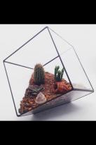Флорариум  для цветов( Куб усеченный ) 220х220, фото 2