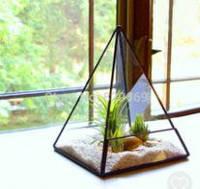 Флорариум для цветов (Пирамида без поддона) 150*150*230