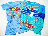 Костюм летний двойка (футболка, шорты)  для мальчика, размер 4.6. лет  арт. 013