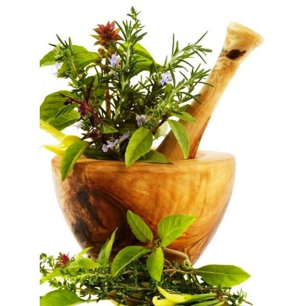Травы и сборы Агафьи для бани