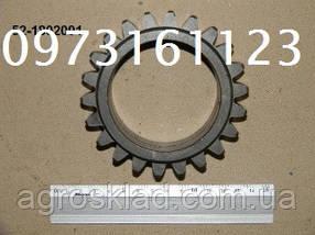 Шестерня промежуточная 52-1802091 (МТЗ, Д-240) привода ПВМ