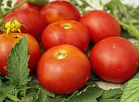 Пакетированные Весовые семена Томата Солярис оптом