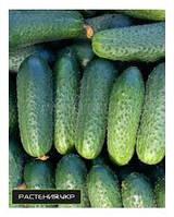 Пакетированные Весовые семена Огурца  Полан F1