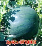 Пакетированные Семена арбуза Огонек ( весовые от производителя)