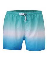Шорты мужские пляжные glo-story