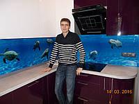 """Скинали - Кухонный фартук """"Дельфины"""", фото 1"""
