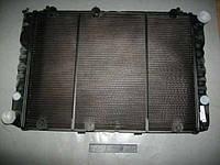 Радиатор охлаждения Волга 3110 (3-х рядн.медь) (пр-во г.Оренбург)