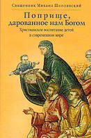 Поприще, дарованное нам Богом. Христианское воспитание детей в современном мире. Священник Михаил Шполянский