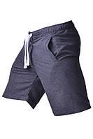 Тренировочные шорты для мужчин SPEED TRAINING Berserk Sport серый