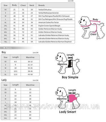 """Комбинезон-дождевик для собак """"РАДУГА"""", размеры S, M, L, XL, 2XL  цвет - красный, фото 2"""
