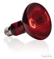 Инфракрасные лампы обогрева молодняка ИКЗК 250 (Красная)