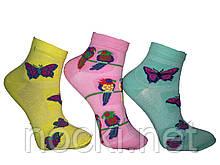 Шкарпетки жіночі бавовна сітка Tommy пр-під Туреччина