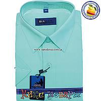 Однотонная рубашка с коротким рукавом (Ворот: 28- 36) (vr8-1)