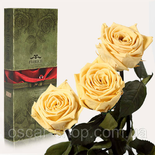 Три долгосвежих розы Florich в подарочной упаковке  - ЖЕЛТЫЙ ТОПАЗ (5 карат на коротком стебле)