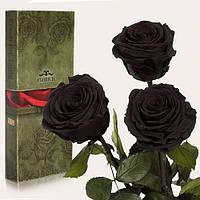 Три долгосвежих розы Florich в подарочной упаковке  - ЧЕРНЫЙ БРИЛЛИАНТ (7 карат на коротком стебле)