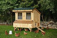Мини птицеферма, фото 1