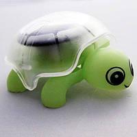 Игрушка Черепашка на солнечной батарее
