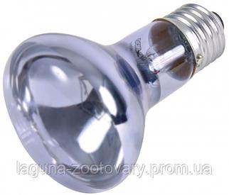 Лампа рефлекторная тропическая прозрачная для террариума  63х100мм, 75вт