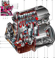 Детали двигателя для грузовиков MAN, DAF, Renault, Iveco, VOLVO